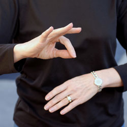 Career Sign Language