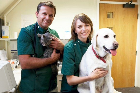 Veterinary Assistant colloge courses
